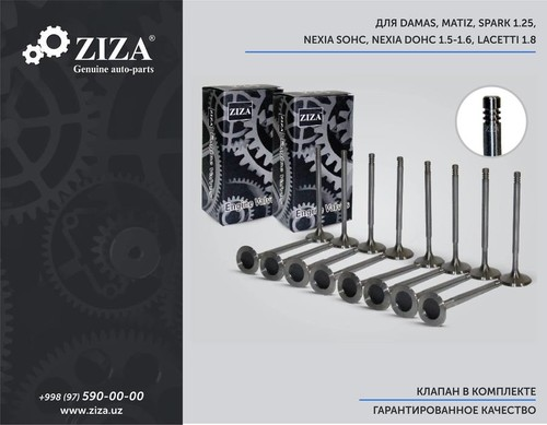ZIZA Genuine auto-parts
